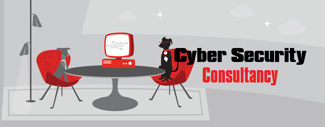 Cyber Security Consultancy banner